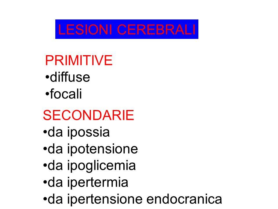 LESIONI CEREBRALI PRIMITIVE diffuse focali SECONDARIE da ipossia da ipotensione da ipoglicemia da ipertermia da ipertensione endocranica
