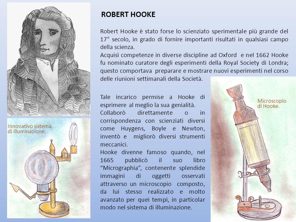 ROBERT HOOKE Robert Hooke è stato forse lo scienziato sperimentale più grande del 17° secolo, in grado di fornire importanti risultati in qualsiasi ca