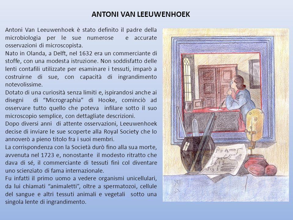 ANTONI VAN LEEUWENHOEK Antoni Van Leeuwenhoek è stato definito il padre della microbiologia per le sue numerose e accurate osservazioni di microscopis