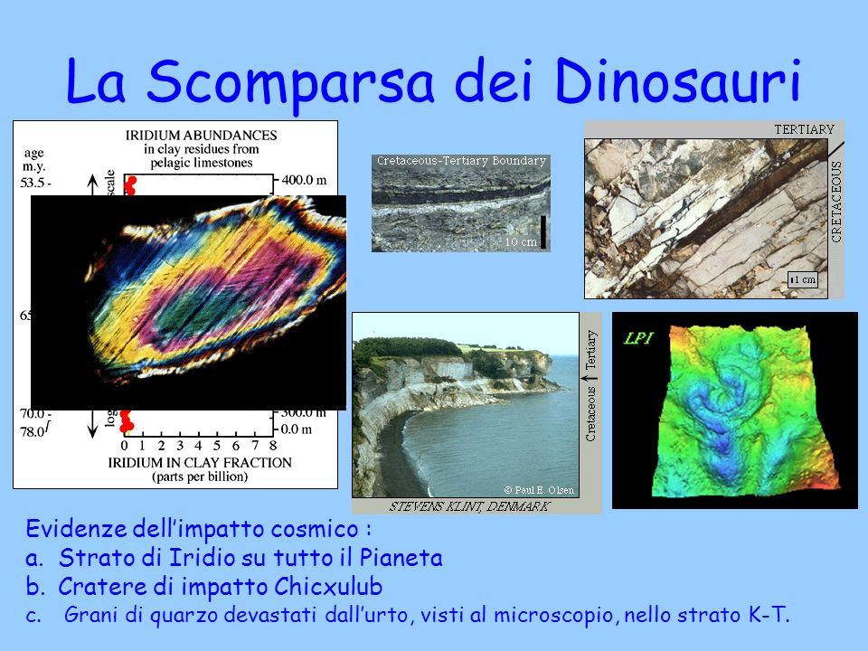 Evidenze dellimpatto cosmico : a.Strato di Iridio su tutto il Pianeta b.Cratere di impatto Chicxulub c. Grani di quarzo devastati dallurto, visti al m