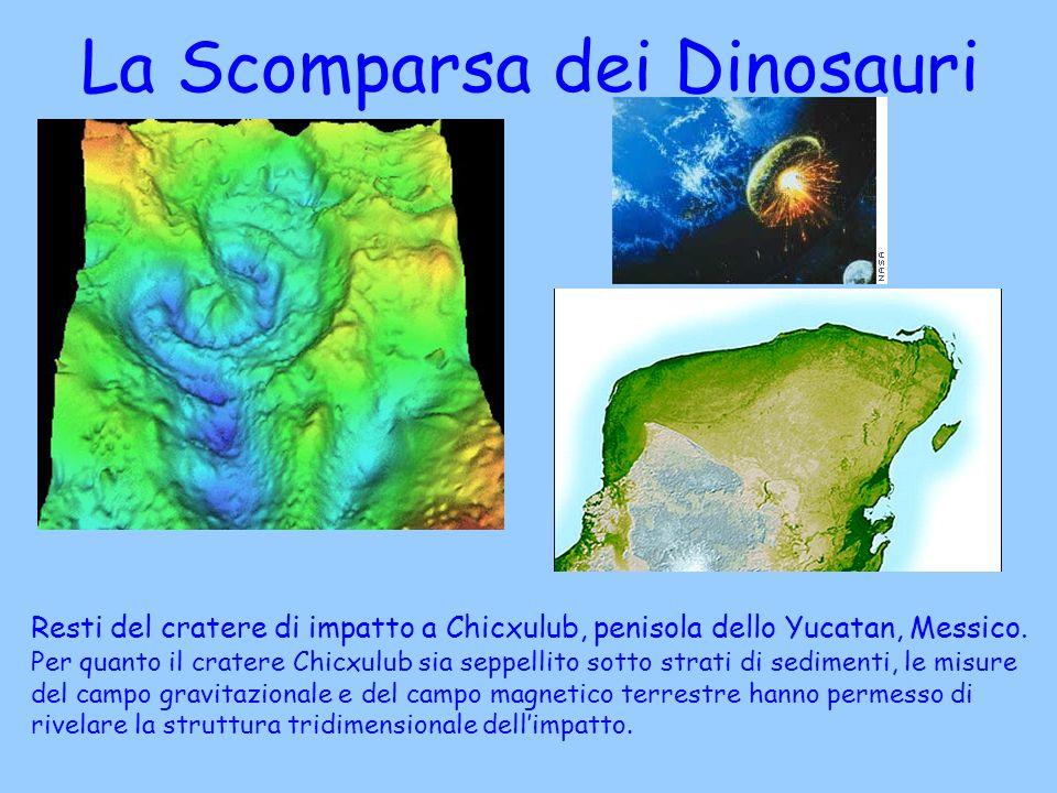 Resti del cratere di impatto a Chicxulub, penisola dello Yucatan, Messico. Per quanto il cratere Chicxulub sia seppellito sotto strati di sedimenti, l
