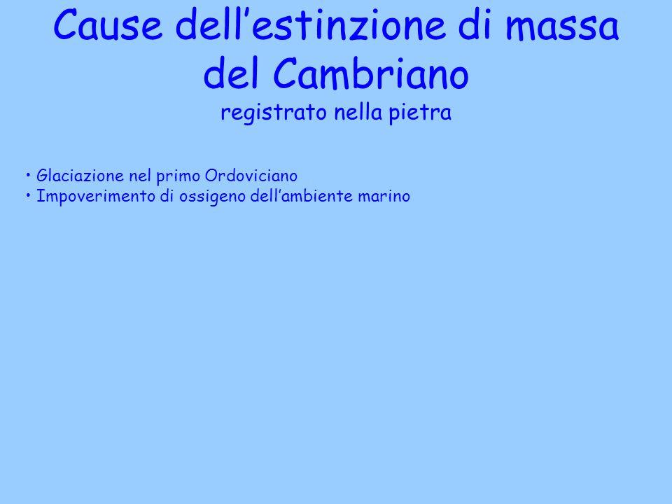 Cause dellestinzione di massa del Cambriano registrato nella pietra Glaciazione nel primo Ordoviciano Impoverimento di ossigeno dellambiente marino