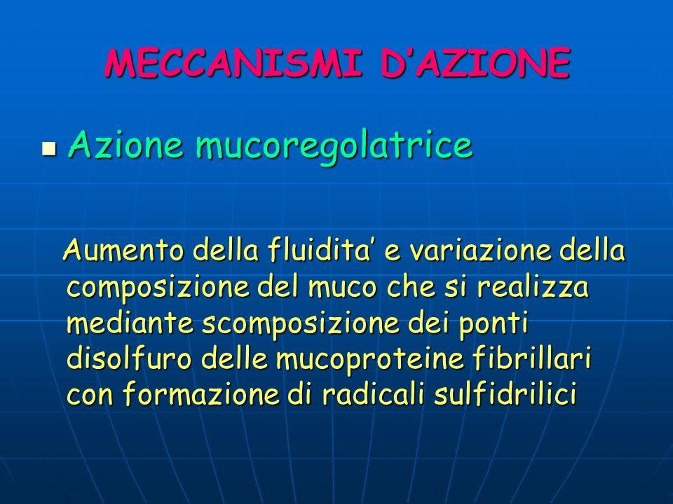 MECCANISMI DAZIONE Azione mucoregolatrice Azione mucoregolatrice Aumento della fluidita e variazione della composizione del muco che si realizza media