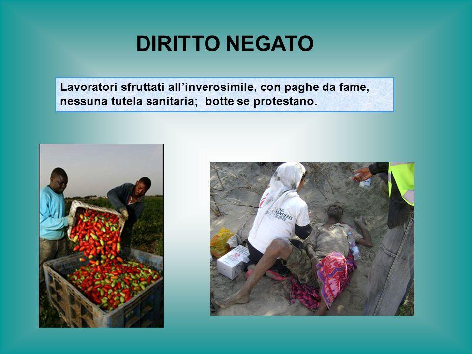 Lavoratori sfruttati allinverosimile, con paghe da fame, nessuna tutela sanitaria; botte se protestano. DIRITTO NEGATO