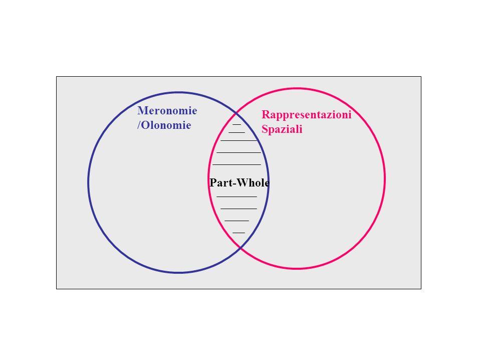 Rappresentazioni Spaziali Meronomie /Olonomie Part-Whole