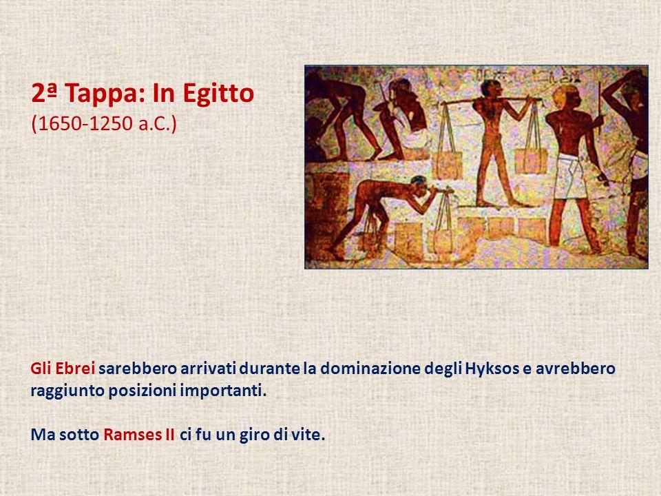 2ª Tappa: In Egitto (1650-1250 a.C.) Gli Ebrei sarebbero arrivati durante la dominazione degli Hyksos e avrebbero raggiunto posizioni importanti.