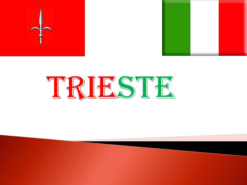 La città è situata nell estremo nord-est italiano, vicino al confine con la Slovenia, nella parte più settentrionale dell Alto Adriatico e si affaccia sull omonimo golfo.