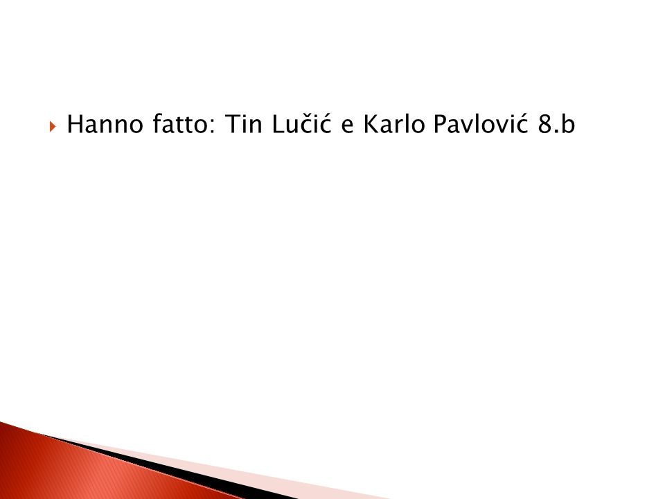 Hanno fatto: Tin Lučić e Karlo Pavlović 8.b