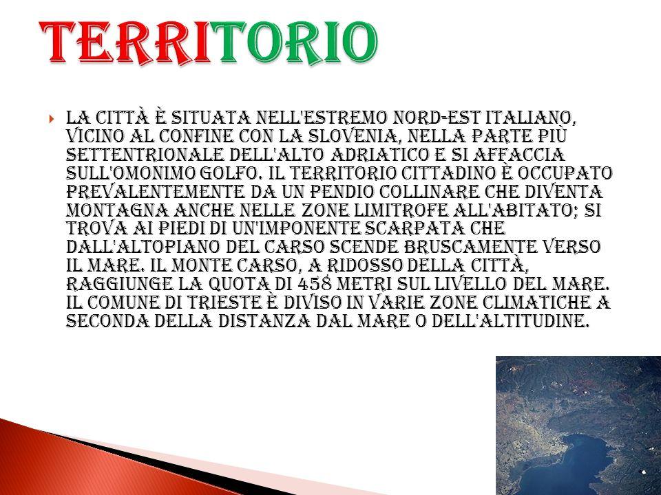La città è situata nell'estremo nord-est italiano, vicino al confine con la Slovenia, nella parte più settentrionale dell'Alto Adriatico e si affaccia