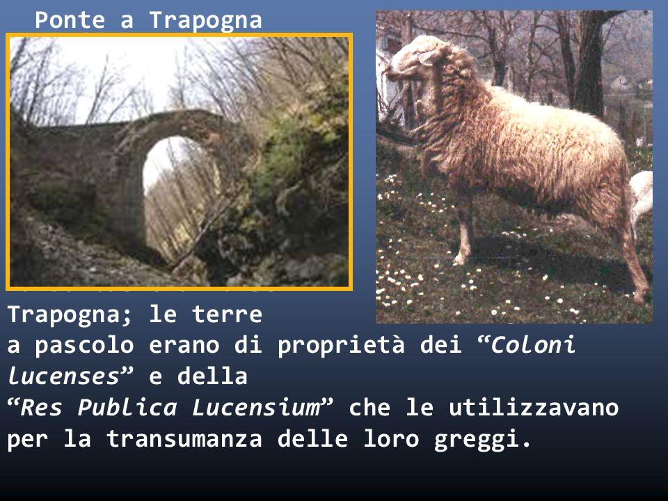 Ponte a Trapogna i a Tarboniae era forse Trapogna; le terre a pascolo erano di proprietà dei Coloni lucenses e dellaRes Publica Lucensium che le utili