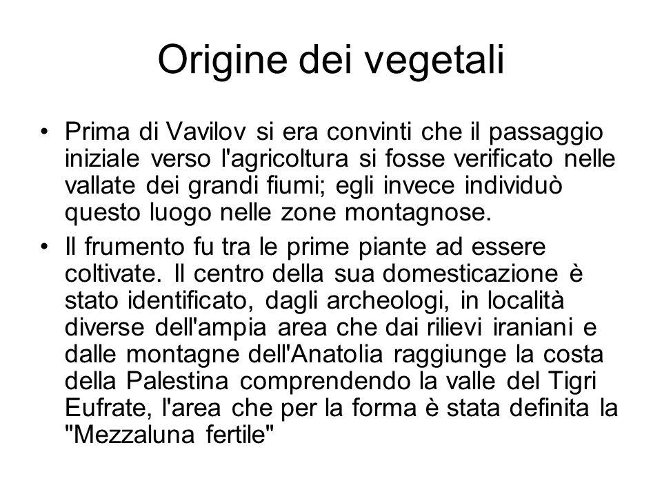 Origine dei vegetali Prima di Vavilov si era convinti che il passaggio iniziale verso l'agricoltura si fosse verificato nelle vallate dei grandi fiumi