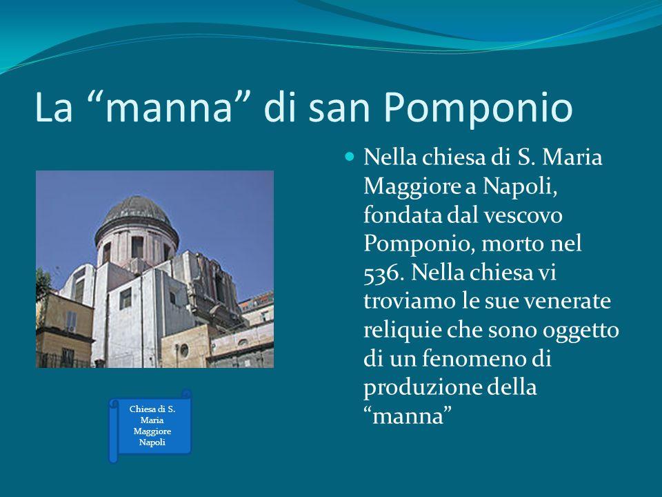 La manna di san Pomponio Nella chiesa di S. Maria Maggiore a Napoli, fondata dal vescovo Pomponio, morto nel 536. Nella chiesa vi troviamo le sue vene
