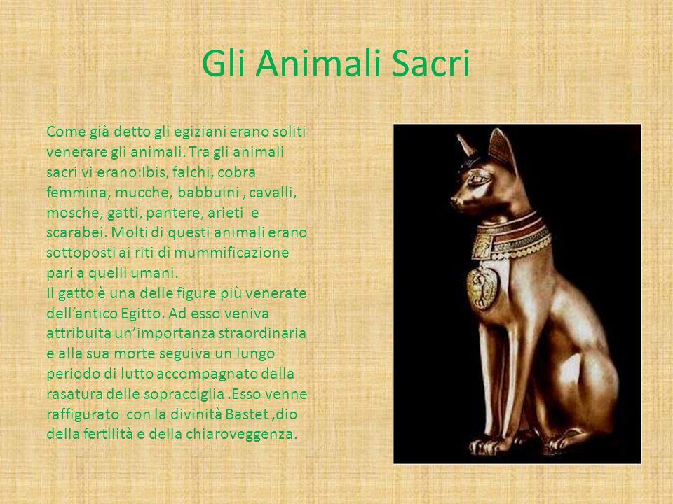 Gli Animali Sacri Come già detto gli egiziani erano soliti venerare gli animali. Tra gli animali sacri vi erano:Ibis, falchi, cobra femmina, mucche, b