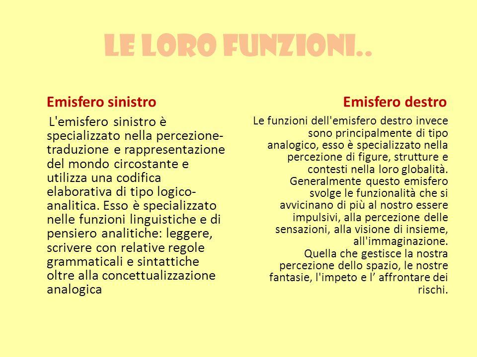 Le loro funzioni.. Emisfero sinistro L'emisfero sinistro è specializzato nella percezione- traduzione e rappresentazione del mondo circostante e utili