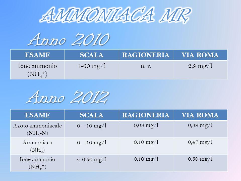 Anno 2010 ESAMESCALARAGIONERIAVIA ROMA Azoto ammoniacale (NH 3 -N) 0 – 10 mg/l 0,08 mg/l0,39 mg/l Ammoniaca (NH 3 ) 0 – 10 mg/l 0,10 mg/l0,47 mg/l Ion