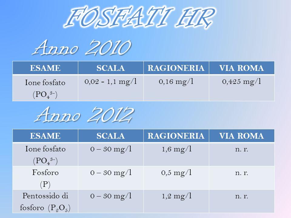 Anno 2010 ESAMESCALARAGIONERIAVIA ROMA Ione fosfato (PO 4 3- ) 0 – 30 mg/l1,6 mg/ln. r. Fosforo (P) 0 – 30 mg/l0,5 mg/ln. r. Pentossido di fosforo (P