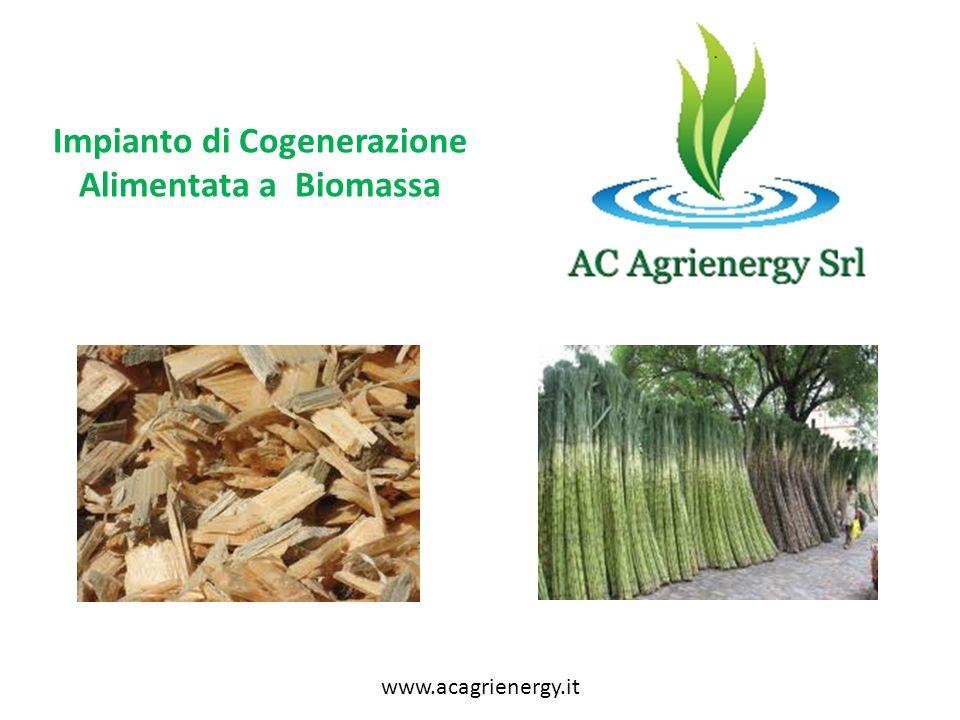 Impianto di Cogenerazione Alimentata a Biomassa www.acagrienergy.it