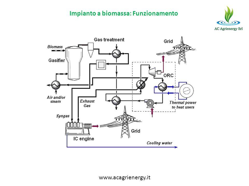 Impianto a biomassa: Funzionamento www.acagrienergy.it