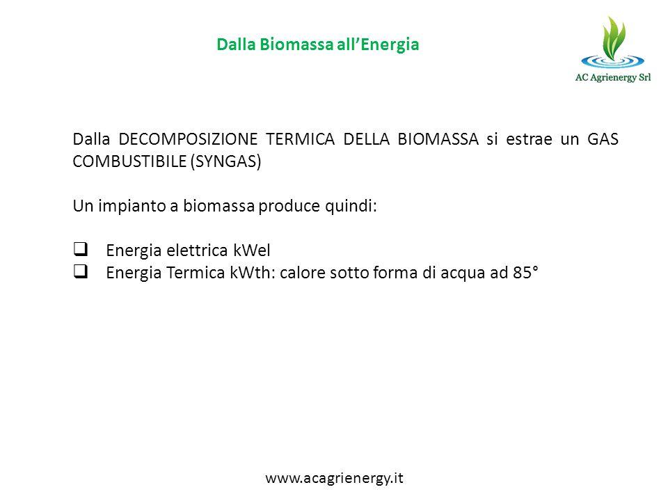 Dalla Biomassa allEnergia Dalla DECOMPOSIZIONE TERMICA DELLA BIOMASSA si estrae un GAS COMBUSTIBILE (SYNGAS) Un impianto a biomassa produce quindi: En