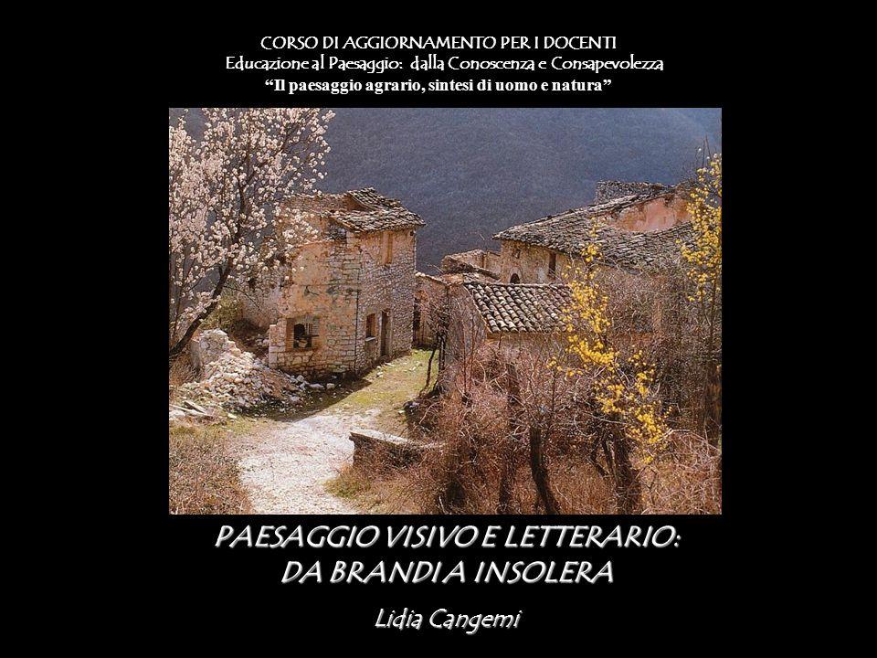 PAESAGGIO VISIVO E LETTERARIO: DA BRANDI A INSOLERA Lidia Cangemi CORSO DI AGGIORNAMENTO PER I DOCENTI Educazione al Paesaggio: dalla Conoscenza e Con