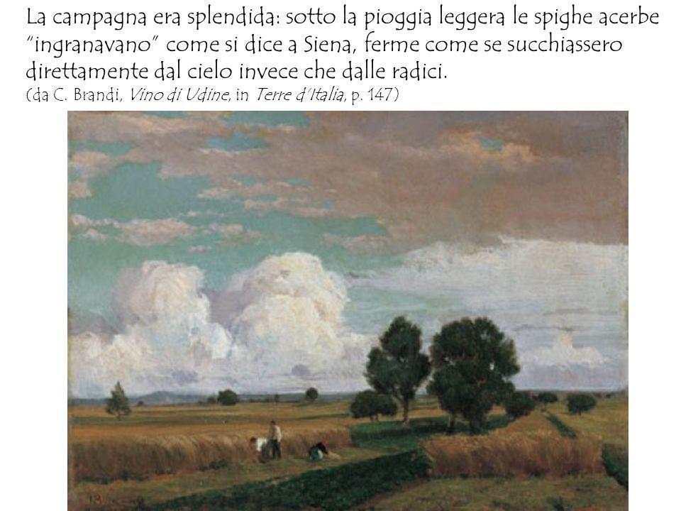La campagna era splendida: sotto la pioggia leggera le spighe acerbe ingranavano come si dice a Siena, ferme come se succhiassero direttamente dal cie