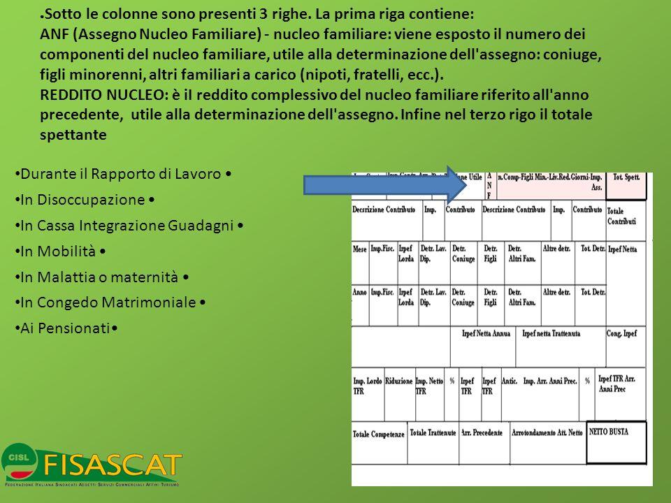 Sotto le colonne sono presenti 3 righe. La prima riga contiene: ANF (Assegno Nucleo Familiare) - nucleo familiare: viene esposto il numero dei compone