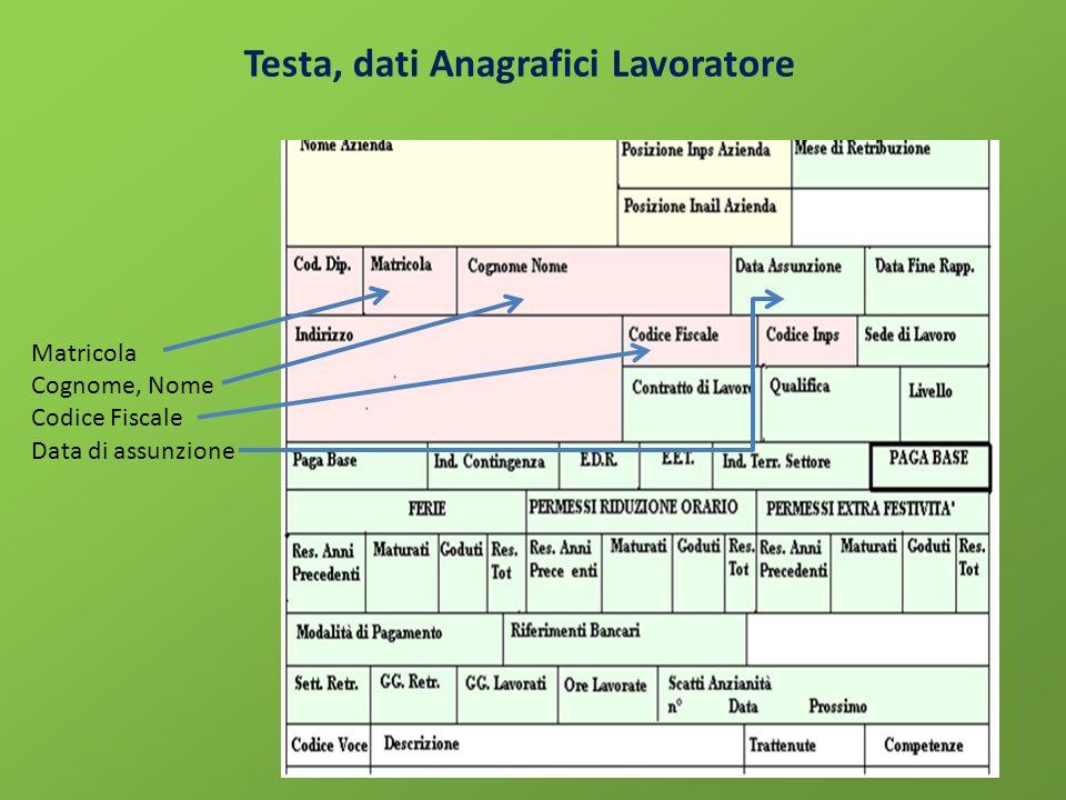Testa, dati Anagrafici Lavoratore Matricola Cognome, Nome Codice Fiscale Data di assunzione