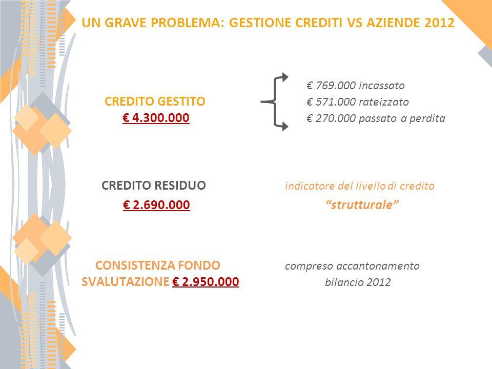 UN GRAVE PROBLEMA: GESTIONE CREDITI VS AZIENDE 2012 769.000 incassato CREDITO GESTITO 571.000 rateizzato 4.300.000 270.000 passato a perdita CREDITO RESIDUO indicatore del livello di credito 2.690.000 strutturale CONSISTENZA FONDO compreso accantonamento SVALUTAZIONE 2.950.000 bilancio 2012