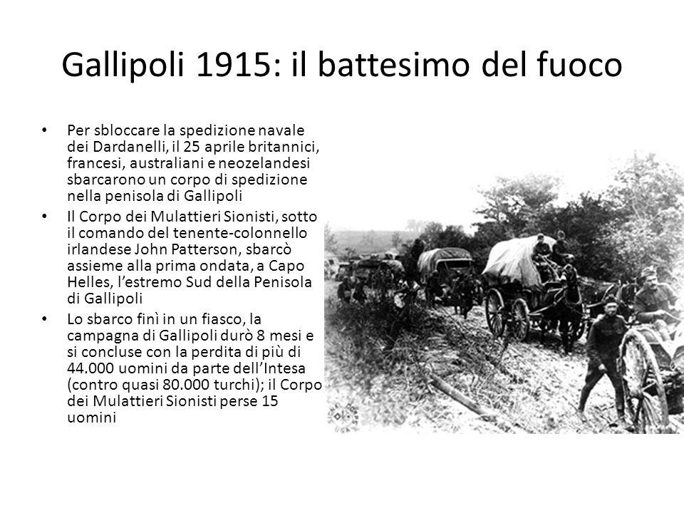 Gallipoli 1915: il battesimo del fuoco Per sbloccare la spedizione navale dei Dardanelli, il 25 aprile britannici, francesi, australiani e neozelandesi sbarcarono un corpo di spedizione nella penisola di Gallipoli Il Corpo dei Mulattieri Sionisti, sotto il comando del tenente-colonnello irlandese John Patterson, sbarcò assieme alla prima ondata, a Capo Helles, lestremo Sud della Penisola di Gallipoli Lo sbarco finì in un fiasco, la campagna di Gallipoli durò 8 mesi e si concluse con la perdita di più di 44.000 uomini da parte dellIntesa (contro quasi 80.000 turchi); il Corpo dei Mulattieri Sionisti perse 15 uomini
