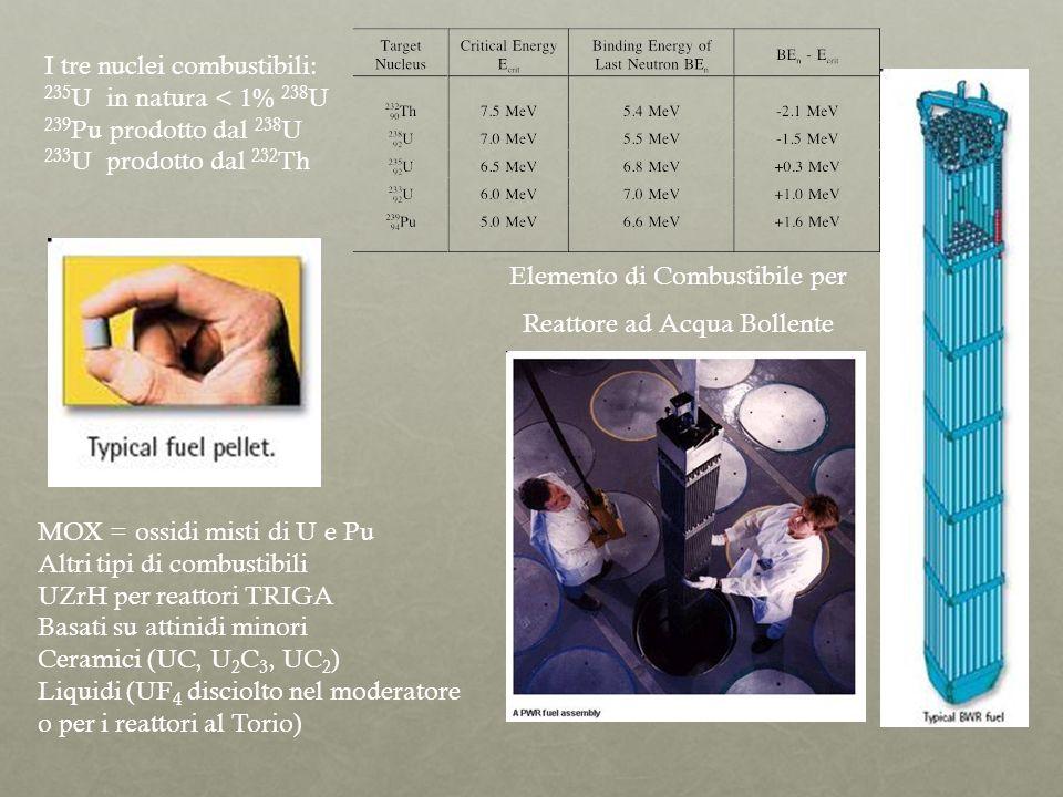 UOX Elemento di Combustibile per Reattore ad Acqua Bollente I tre nuclei combustibili: 235 U in natura < 1% 238 U 239 Pu prodotto dal 238 U 233 U prod