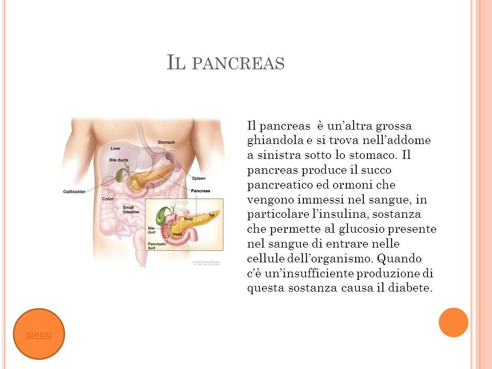 Il pancreas è unaltra grossa ghiandola e si trova nelladdome a sinistra sotto lo stomaco. Il pancreas produce il succo pancreatico ed ormoni che vengo