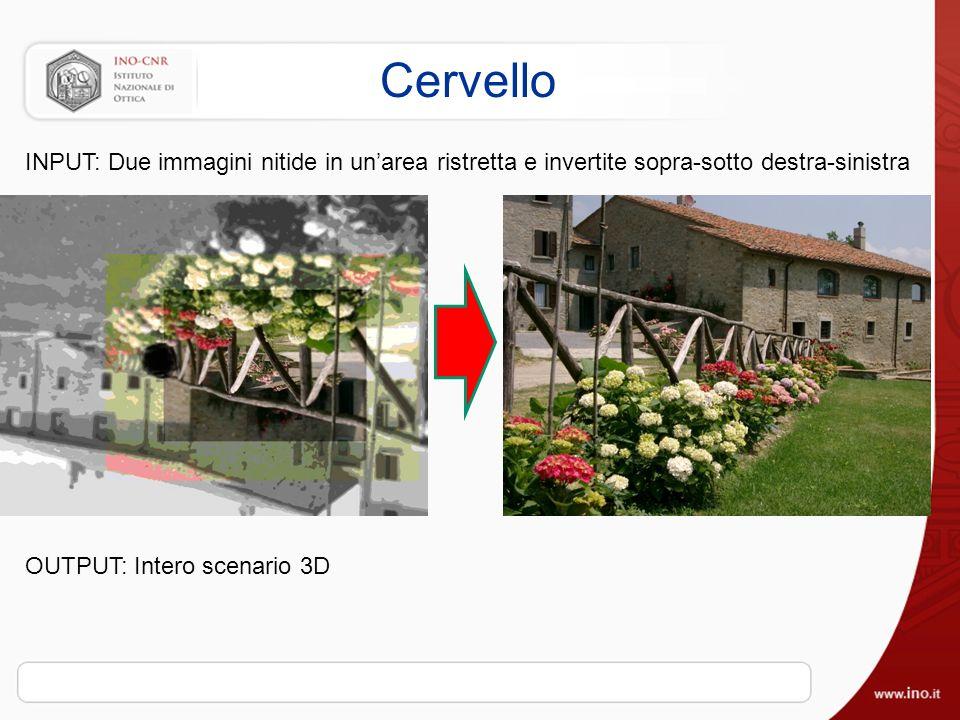 Cervello INPUT: Due immagini nitide in unarea ristretta e invertite sopra-sotto destra-sinistra OUTPUT: Intero scenario 3D