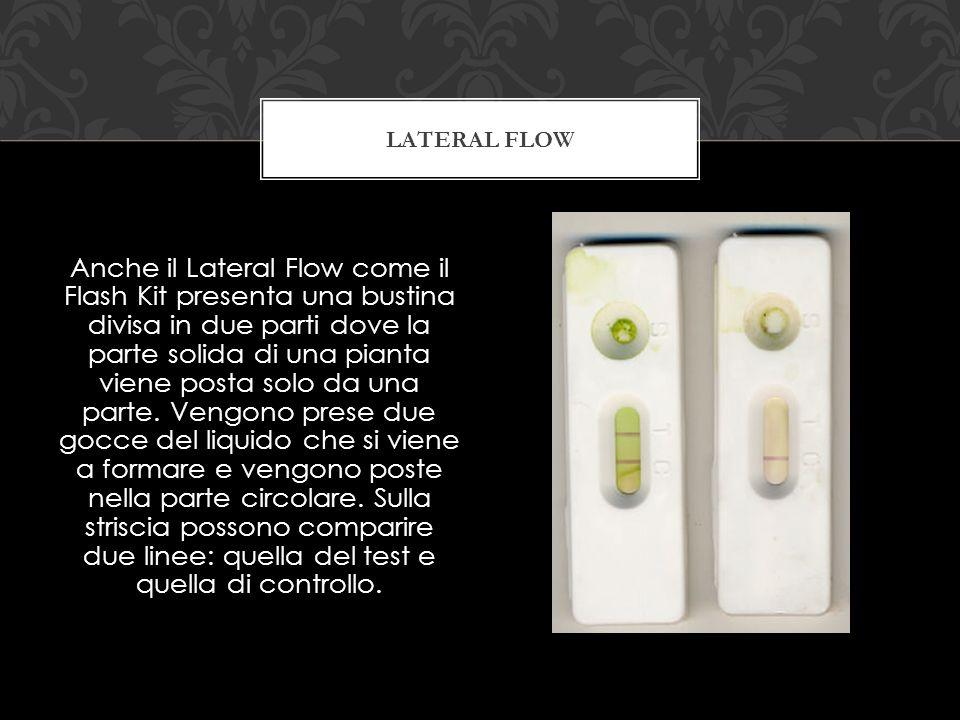 Anche il Lateral Flow come il Flash Kit presenta una bustina divisa in due parti dove la parte solida di una pianta viene posta solo da una parte.