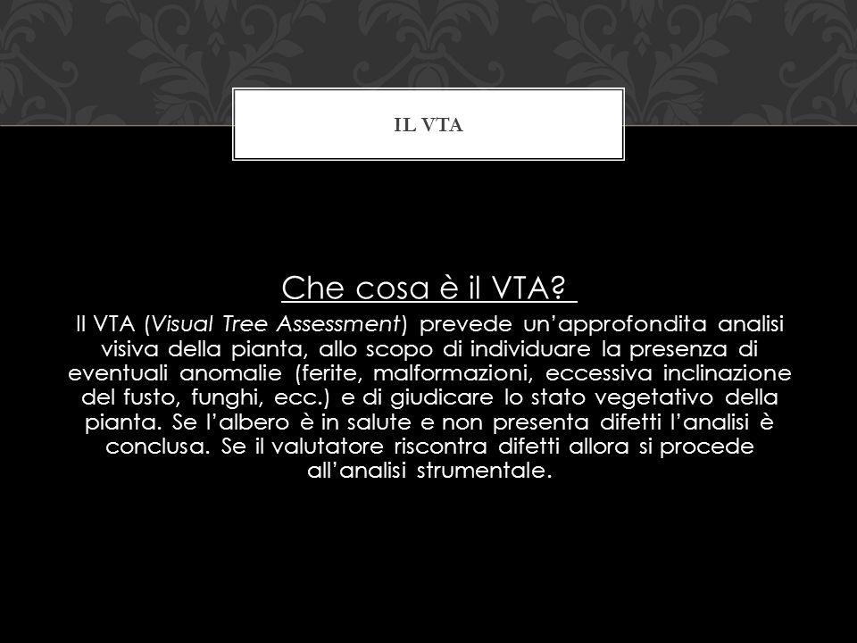 Che cosa è il VTA? Il VTA (Visual Tree Assessment) prevede unapprofondita analisi visiva della pianta, allo scopo di individuare la presenza di eventu