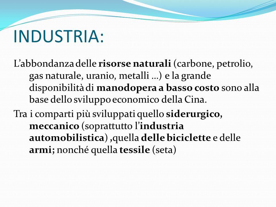 INDUSTRIA: Labbondanza delle risorse naturali (carbone, petrolio, gas naturale, uranio, metalli …) e la grande disponibilità di manodopera a basso cos