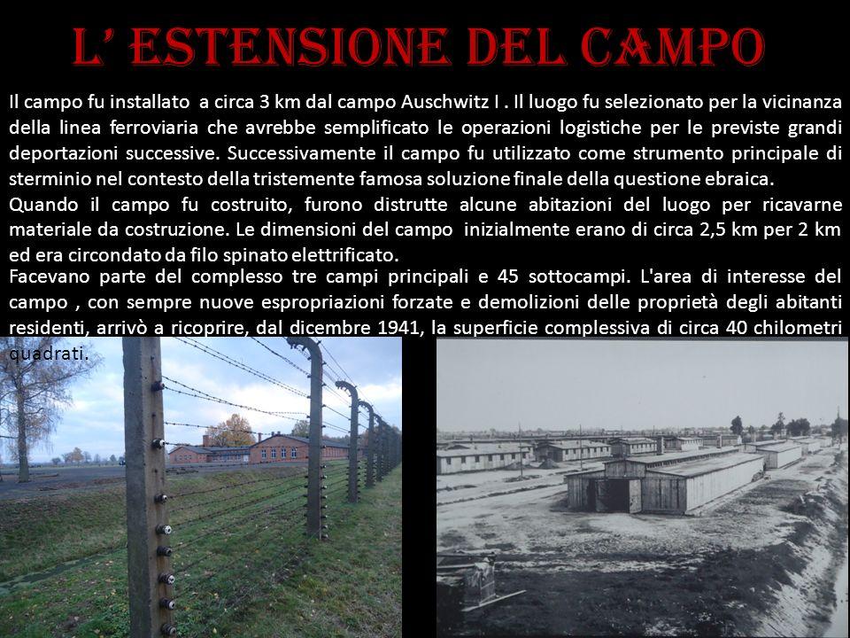 L estensione del campo Il campo fu installato a circa 3 km dal campo Auschwitz I. Il luogo fu selezionato per la vicinanza della linea ferroviaria che