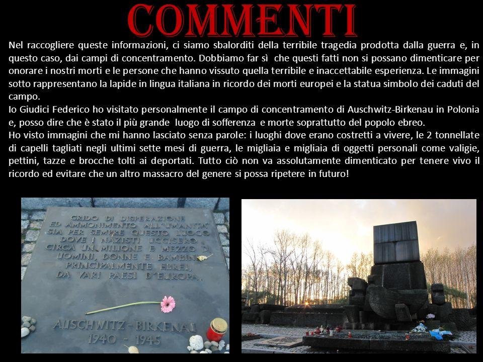 commenti Nel raccogliere queste informazioni, ci siamo sbalorditi della terribile tragedia prodotta dalla guerra e, in questo caso, dai campi di conce