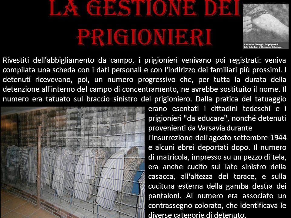 La gestione dei prigionieri Rivestiti dell'abbigliamento da campo, i prigionieri venivano poi registrati: veniva compilata una scheda con i dati perso