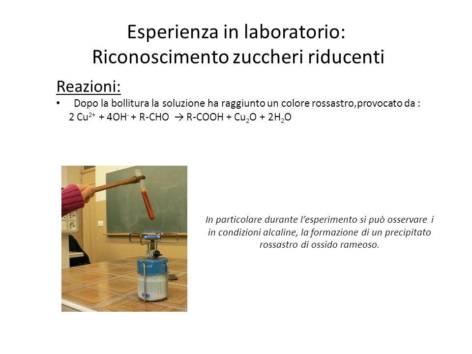 Esperienza in laboratorio: Riconoscimento zuccheri riducenti Reazioni: Dopo la bollitura la soluzione ha raggiunto un colore rossastro,provocato da :