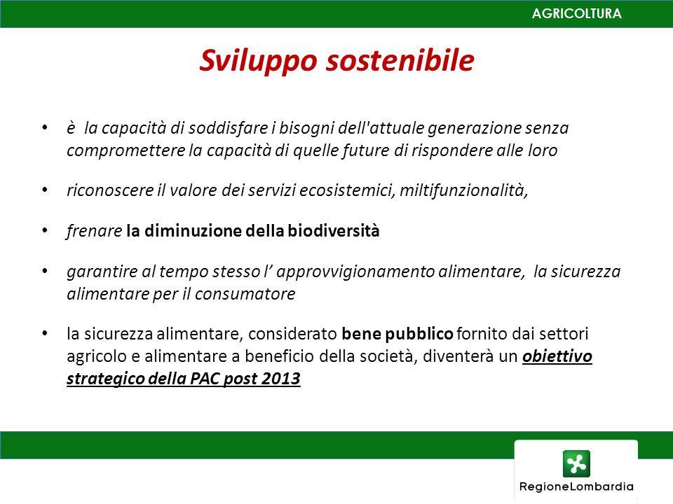 Sviluppo sostenibile è la capacità di soddisfare i bisogni dell attuale generazione senza compromettere la capacità di quelle future di rispondere alle loro riconoscere il valore dei servizi ecosistemici, miltifunzionalità, frenare la diminuzione della biodiversità garantire al tempo stesso l approvvigionamento alimentare, la sicurezza alimentare per il consumatore la sicurezza alimentare, considerato bene pubblico fornito dai settori agricolo e alimentare a beneficio della società, diventerà un obiettivo strategico della PAC post 2013