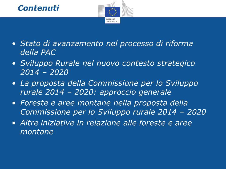 Elementi salienti Forte continuit à respetto all attuale periodo di programmazione Funzione ambientale del settore forestale nell ambito del quadro strategico per lo SR… … nel pieno riconoscimento del contributo fondamentale del settore allo sviluppo (socio- economico, ambientale) sostenibile delle aree rurali della UE.