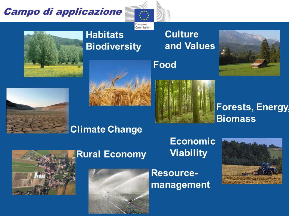 Food Habitats Biodiversity Economic Viability Culture and Values Climate Change Resource- management Campo di applicazione Rural Economy Forests, Energy, Biomass