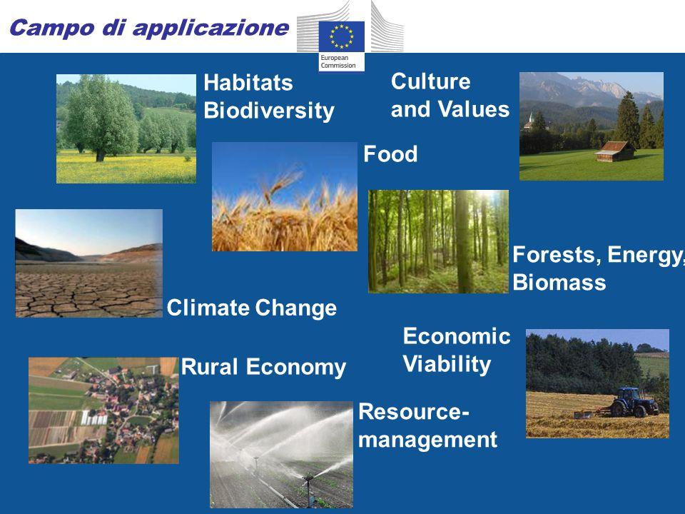 17 Piani di Gestione Forestali (PGF) Accesso ai finanziamenti SR per misure forestali (art.