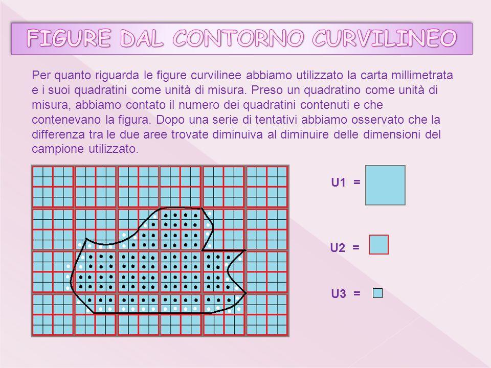 Per quanto riguarda le figure curvilinee abbiamo utilizzato la carta millimetrata e i suoi quadratini come unità di misura.