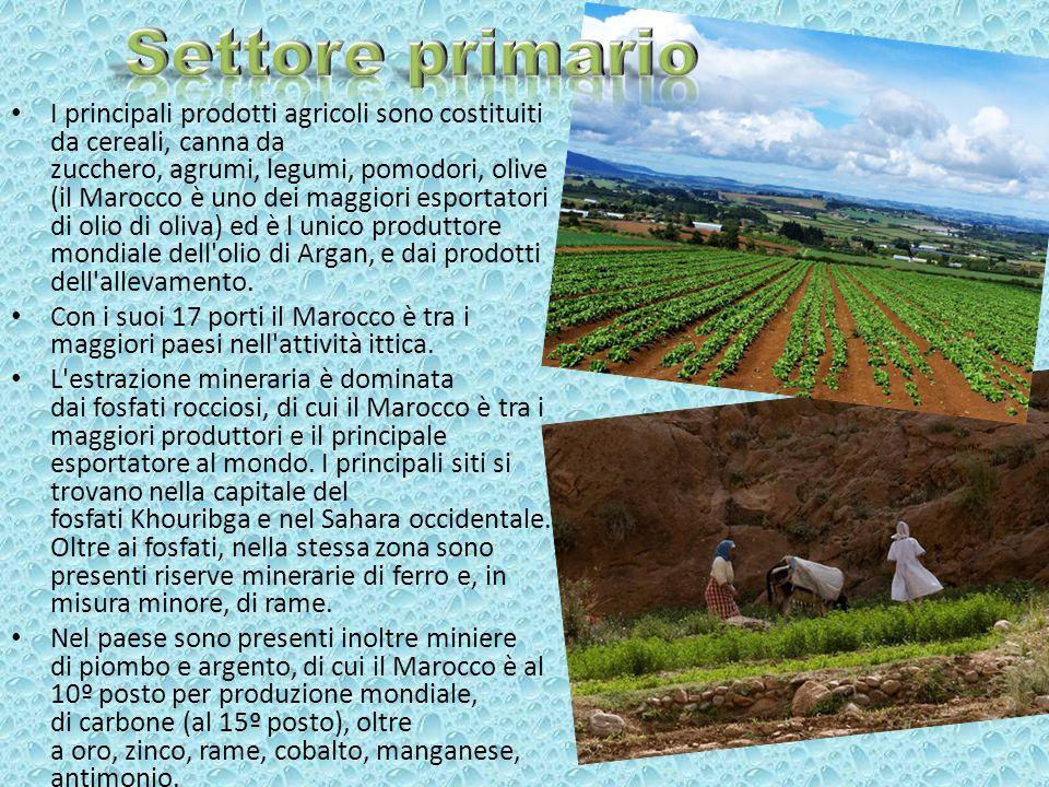 I principali prodotti agricoli sono costituiti da cereali, canna da zucchero, agrumi, legumi, pomodori, olive (il Marocco è uno dei maggiori esportato