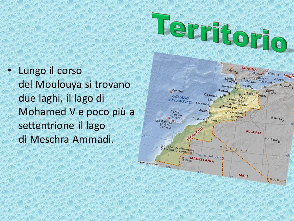 Il clima è mediterraneo lungo la costa e continentale nellentroterra.
