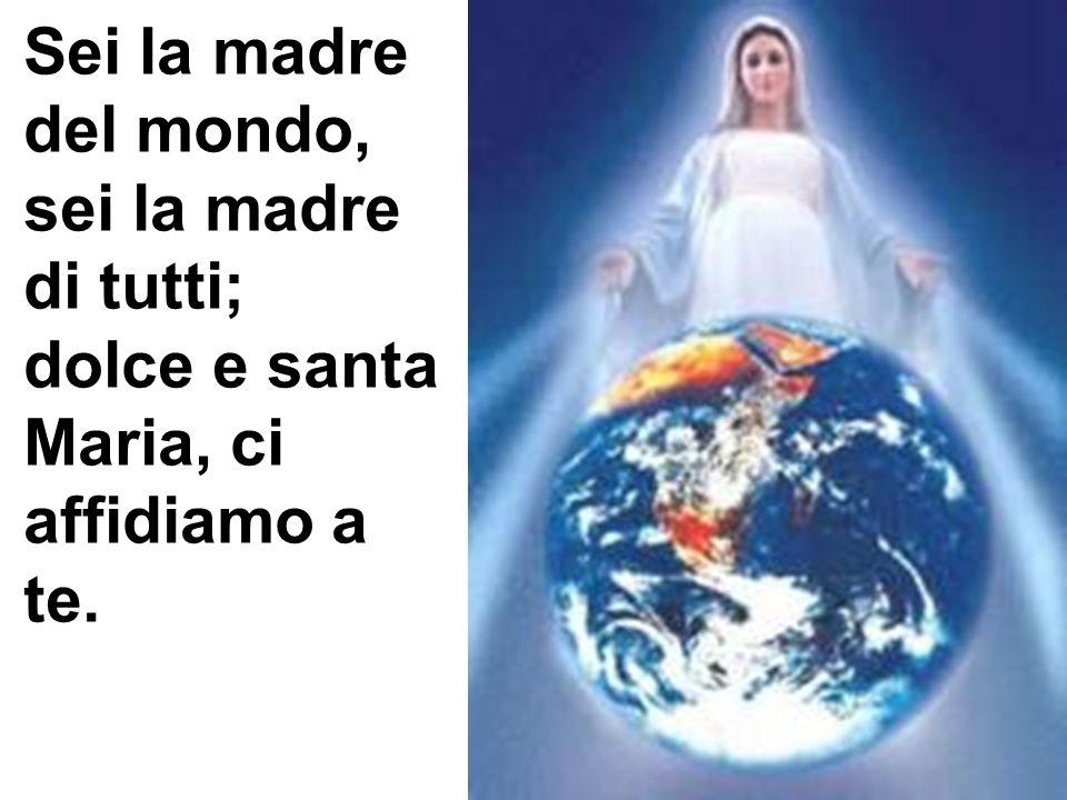 Sei la madre del mondo, sei la madre di tutti; dolce e santa Maria, ci affidiamo a te.