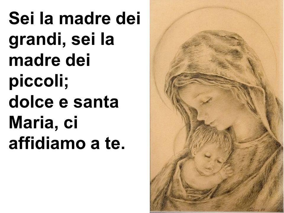 Sei la madre dei grandi, sei la madre dei piccoli; dolce e santa Maria, ci affidiamo a te.