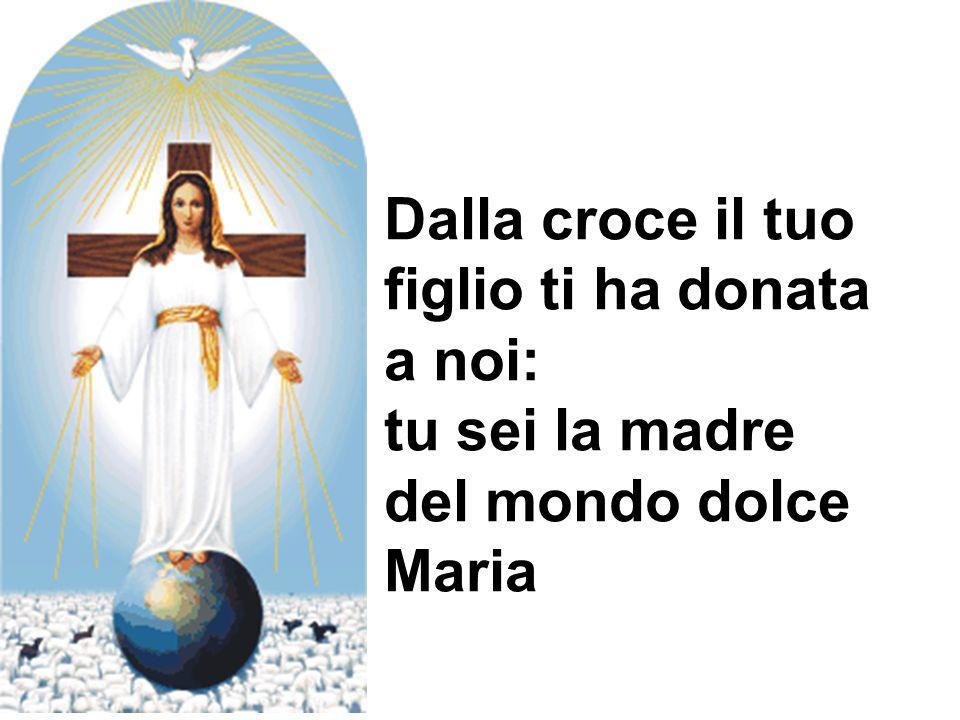 Dalla croce il tuo figlio ti ha donata a noi: tu sei la madre del mondo dolce Maria