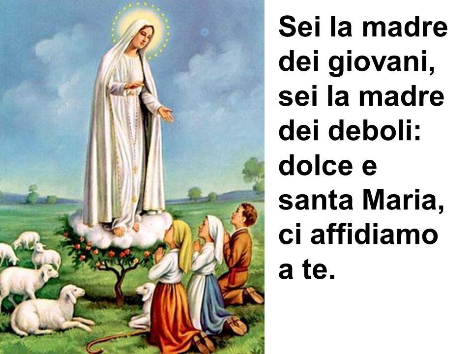 Sei la madre dei giovani, sei la madre dei deboli: dolce e santa Maria, ci affidiamo a te.